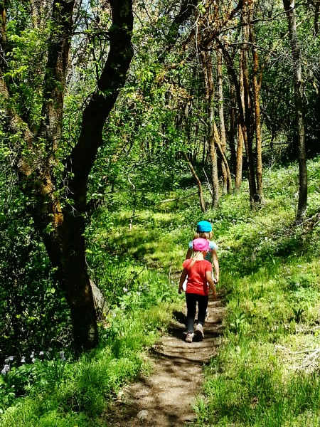 Great little hikes for kids Yellow Fork Canyon